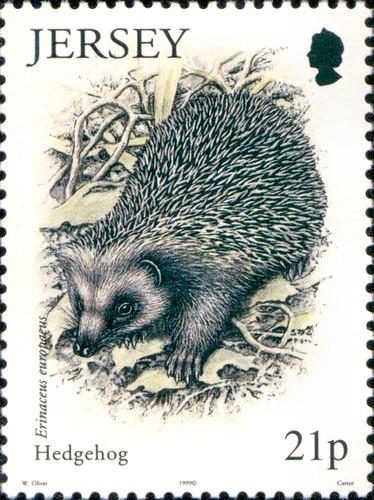 http://hedgehog-stamps.narod.ru/fauna/img/jersey1999-1.jpg