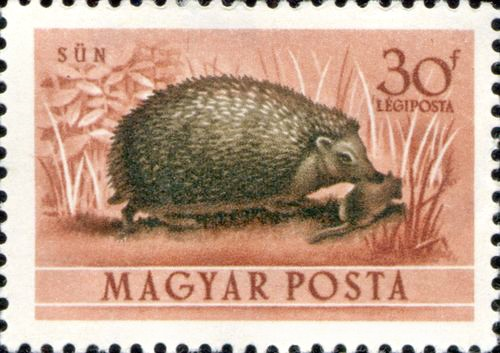 http://hedgehog-stamps.narod.ru/fauna/img/magyar1953-2.jpg