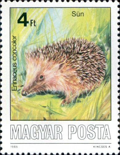 http://hedgehog-stamps.narod.ru/fauna/img/magyar1984-5.jpg